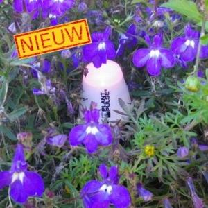 Plant Pulse soil moisture meter (sensor)