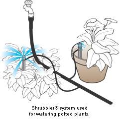 Shrubbler Steker 360 adjustable