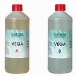 Ganna Vega A + B 1 liter