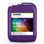 Plagron Green Sensation Top Activator 5ltr.
