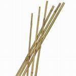 Bamboe stokjes 120cm 25 stuks