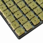 Stekpluggen stektray 150x plug Cultilene